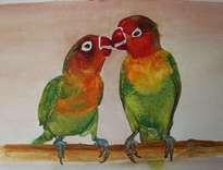 birds parrots
