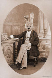 lord rabbit