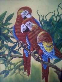 papagallos