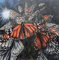 mariposas org