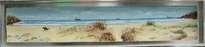 playa xago