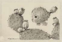 el acuario de los peces cactus - ( dibujo)