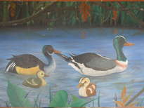 patos del pantano