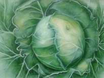 hortaliza