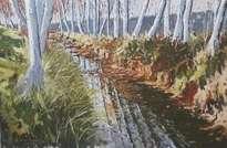 el canal d'urgell  a su paso por juneda