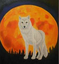 full moon white wolf