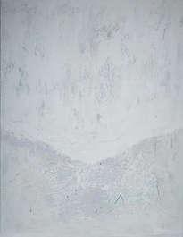 white coat - manto blanco
