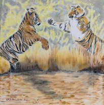two tigers fighting