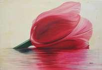 paqui millán: tulipán