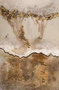 mar de aral. zahoríes