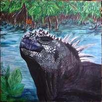 iguana marina de galapagos
