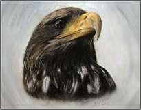 águila marrón