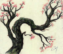 arbol japones
