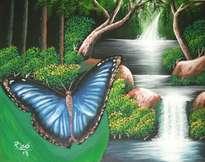 mariposas de costarica.
