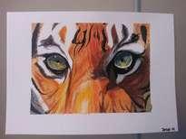 mirada de tigre