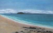 playa de corralejo (fuerteventura)