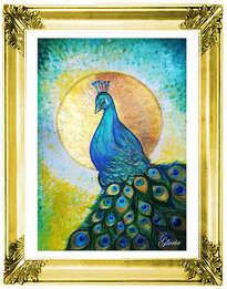 my peacock