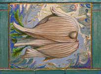 el pez hinojo