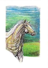 caballo bayo