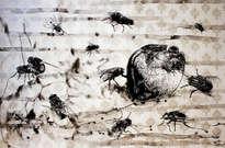 flugor