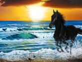 serie marinas y caballos no. 4