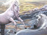 serie marinas y caballos no.1