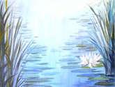 lotus and pond