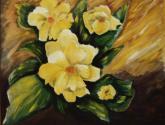 magnolia pasion