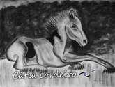 cavalo 6