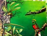 quetzal i