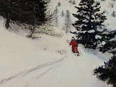 skiing (ref.106)