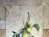 rama de limones