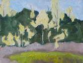 the yellow poplars