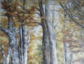 brisas de otoño