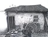 casa con pavo