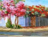 cantinho de primaveras
