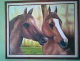 que miran los caballos?