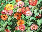 entre las flores