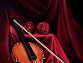 violina e vjeter
