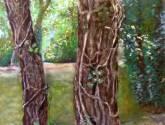 dans le bois n°2