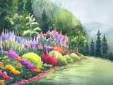beauty of a  mountain garden