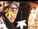 gota de otoño