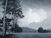 paisaje gris