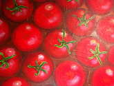 tomates