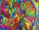 quarks-farben-kraft