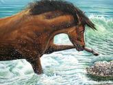 serie marinas y caballos no. 3