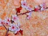 almendros blancos en flor.