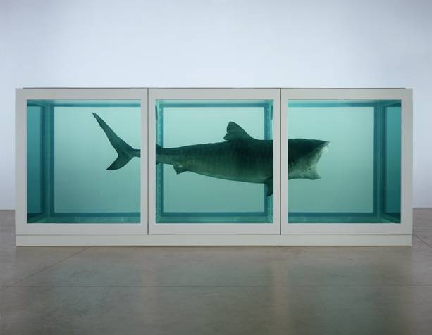 1.	Damien Hirst The Physical Impossibility of Death in the Mind of Someone Living  1991 © Damien Hirst and Science Ltd. All rights reserved. DACS 2011. . Photo: Photographed by Prudence Cuming Associates