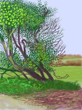 David Hockney  La llegada de la primavera en Woldgate, East Yorkshire (veinte-once) - 12 de abril, No. 1  [The Arrival of Spring in Woldgate, East Yorkshire in 2011 (twenty-eleven) - 12 April, No. 1]  2011  Cortesa del artista