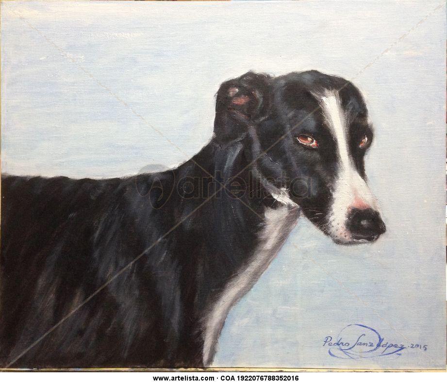 Galgo, negro a derecha,mascotas,perros,galgos,animales,cuadros ...